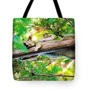 Lady Please I Said No More Pictures Tote Bag
