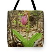Lady Slipper 2037 Tote Bag