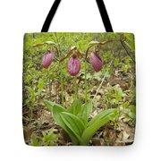 Lady Slipper 2059 Tote Bag