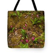 Lady Slippers And Star Flower Tote Bag