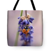 Ladybird On Norfolk Lavender  #norfolk Tote Bag