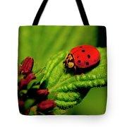 Ladybug Atop A Leaf Tote Bag