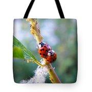 Ladybug Beetles Mating Near Aphids    Spring    Indiana Tote Bag