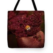 Ladybug In Chocolate Tote Bag