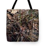 Ladybug Tuft Tote Bag