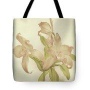 Laelia Autumnalis Venusta Tote Bag