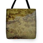 Lago Transparente Tote Bag