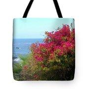 Laguna Beach, Southern California 3 Tote Bag