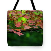 Laid Upon The Branches Tote Bag
