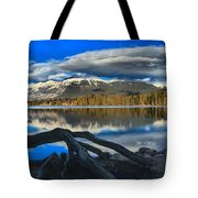 Lake Beauvert Roots Tote Bag