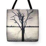 'lake Bonney' Tote Bag
