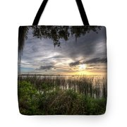Lake Dora Tote Bag