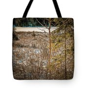 Lake Edge Tote Bag