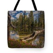 Lake Eleanor Tote Bag
