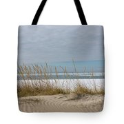 Lake Erie Ice Blanket With Sand Dunes And Dry Grass Tote Bag