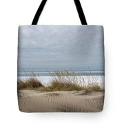 Lake Erie Sand Dunes Dry Grass And Ice Tote Bag
