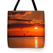 Lake Erie Sunset 7999 Tote Bag