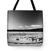 Lake Fun 5 Tote Bag