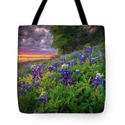 Lake Grapevine Twilight Tote Bag
