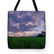 Lake Harney Sunset Tote Bag
