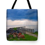 Lake Huron Michigan Tote Bag