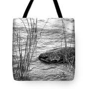 Lake Huron Shoreline 10 Bw Tote Bag