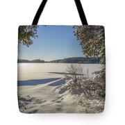 Lake In Winter Tote Bag