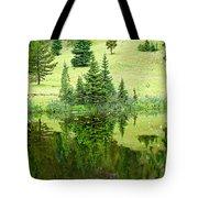 Lake Irene 12-2 Tote Bag