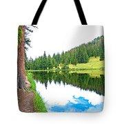 Lake Irene 12-3 Tote Bag