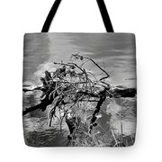 Lake Irene 12-4 Tote Bag