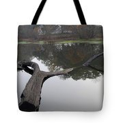 Lake Margerite Tote Bag