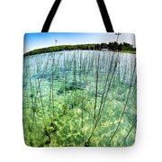 Lake Mindemoya Wading In The Reeds Tote Bag
