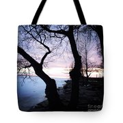 Lake Ontario In March  Tote Bag