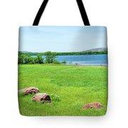 Lake Quanah Parker -  Wichita Mountains - Oklahoma Tote Bag