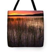 Lake Reeds At Sundown Tote Bag