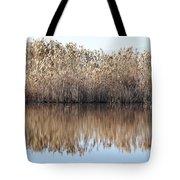 Lake Reflexion Tote Bag