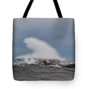 Lake Superior Beauty Tote Bag