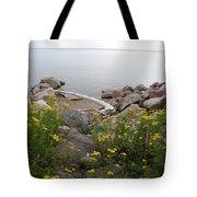 Lake Superior Shore Tote Bag