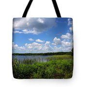 Lake Tarpon Tote Bag