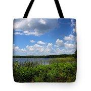 Lake Tarpon Tote Bag