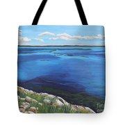 Lake Toho Tote Bag