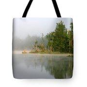 Lake Umbagog Morning Light  Tote Bag