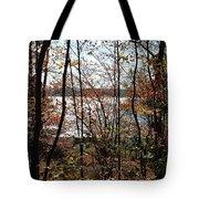 Lake Wallenpaupack Through The Trees Tote Bag