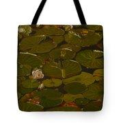 Lake Washington Lily Pad 17 Tote Bag