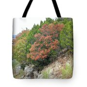 Lake034 Tote Bag