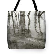 Lakes Edge Tote Bag
