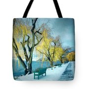 Lakeshore Walkway In Winter Tote Bag