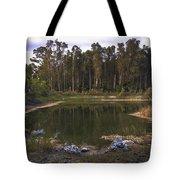 Lakeside Reflections Tote Bag