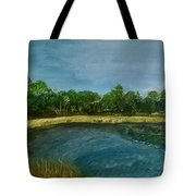 Lakeview Tallahassee Tote Bag