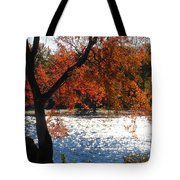 Lakewood Tote Bag